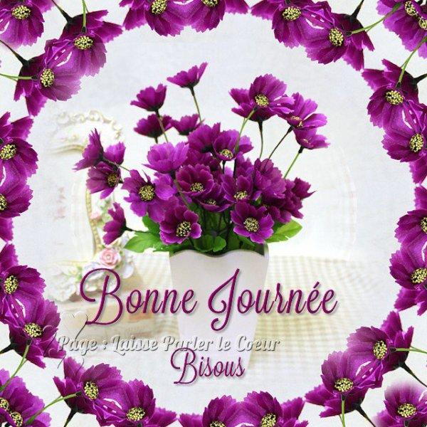 Je vous souhaite une excellente après-midi en ce dimanche ensoleillé dernier jour du mois de Juillet bisous