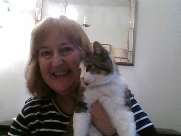 8 août : Journée internationale du chat