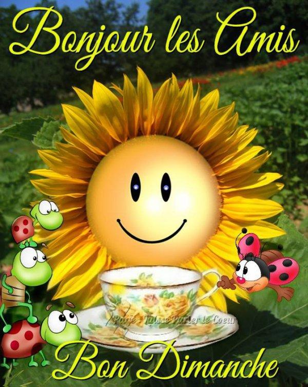 Bonjour à tous .. je vous souhaite une belle journée de dimanche... bisou