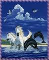 dauphin et cheval