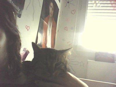 mon chat d' amour