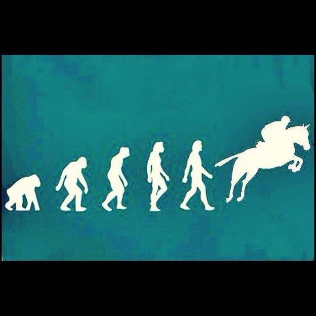 astuce-équitation