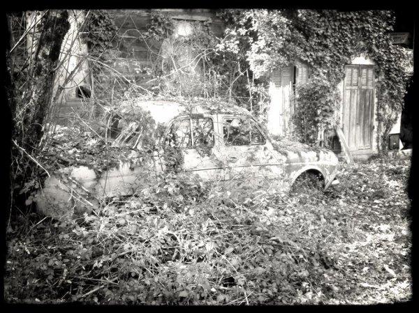 Promenons nous dans les bois ... du Lot et Garonne