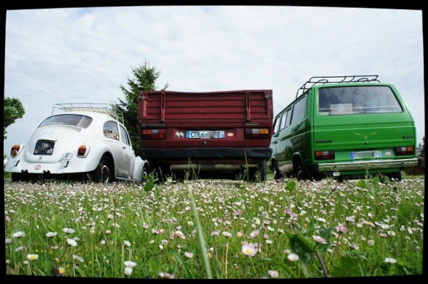 VW Family