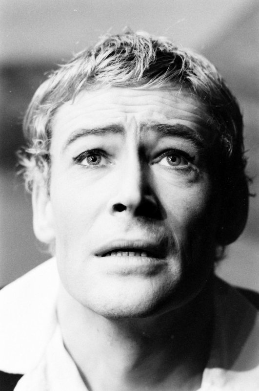 Hommage à Peter O'Toole