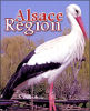Alsace-Region