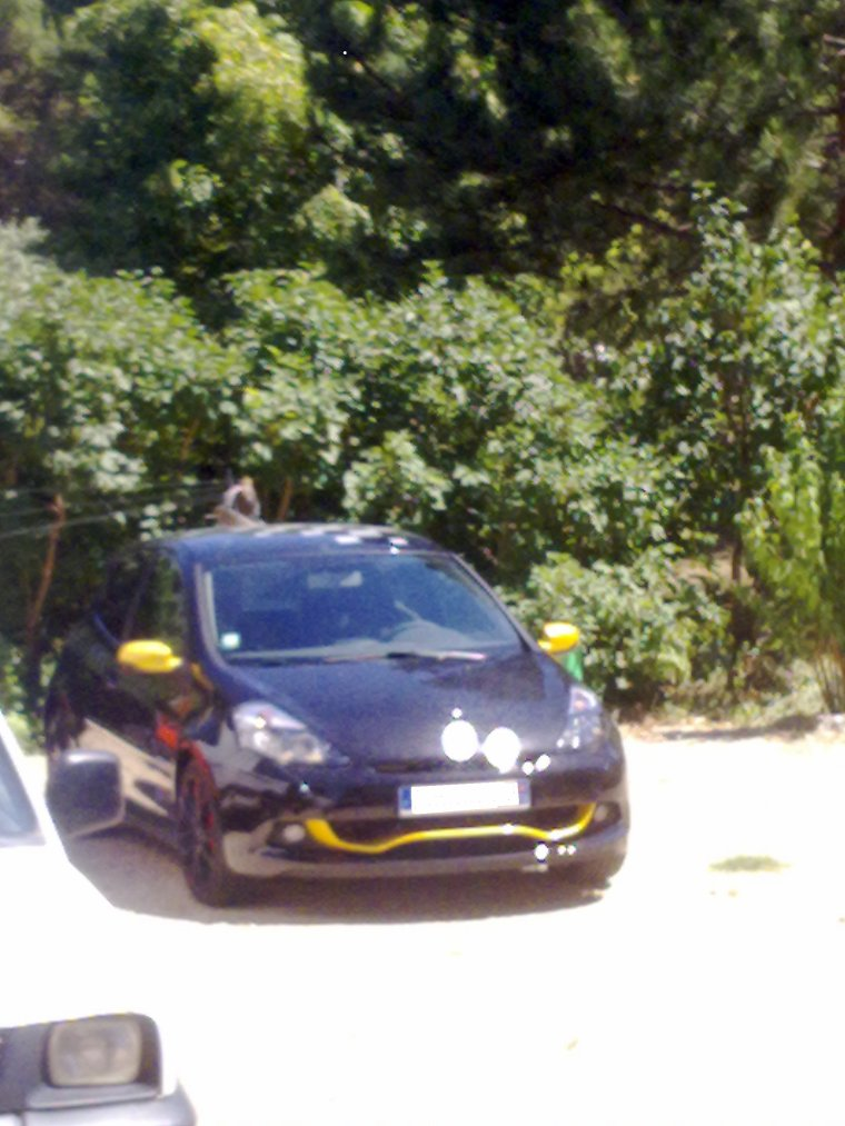renault clio rs red bull racing rb7 provencevaucluse uto. Black Bedroom Furniture Sets. Home Design Ideas