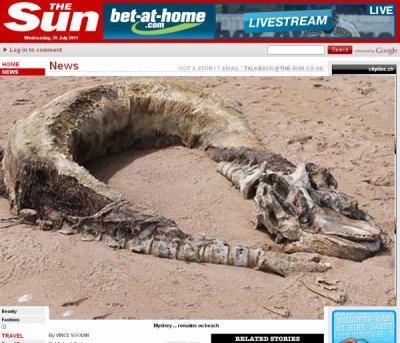 Un monstre s'échoue sur une plage...