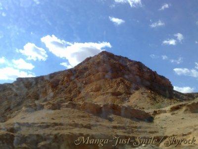 ◙ La beauté du Sahara ( 1 ére partie) ◙