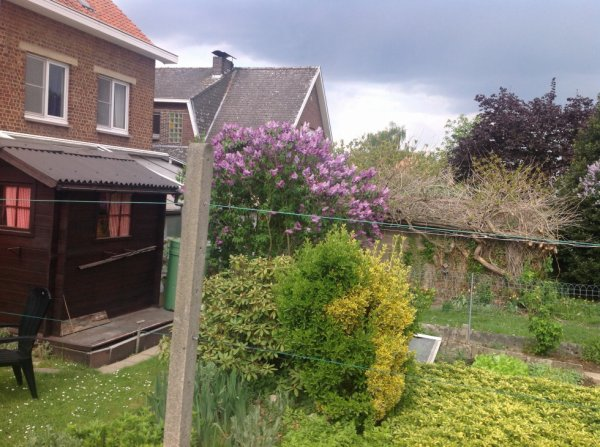 Yes,du lilas