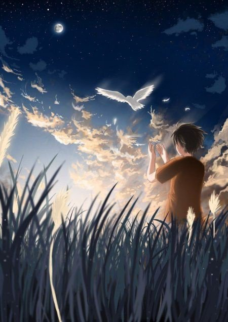 Je veux m'envoler pour etre libre, comme un oiseaux dans le ciel