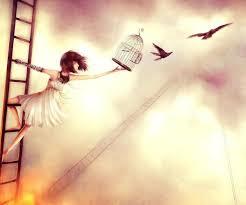 Seuls les oiseaux qui etait en cages connaissent le vrai sens du mot liberté en entier car ils ont connu le vrai sens du mot emprisonné.