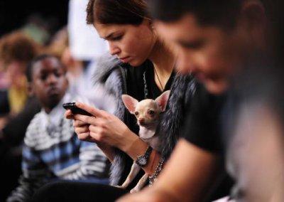 """Téléphones portables cancérogènes : """"Des preuves limitées"""" selon les fabricants"""