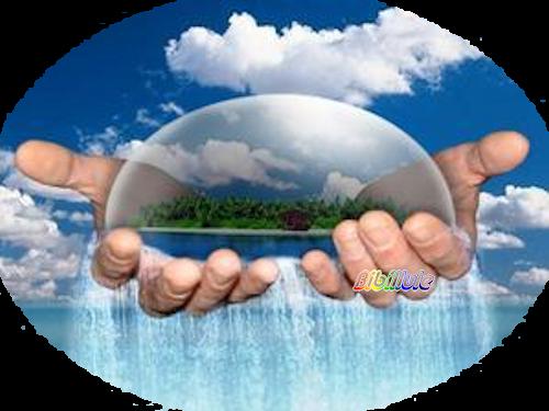 Solution écologique et économique pour pallier les effets de la sécheresse......