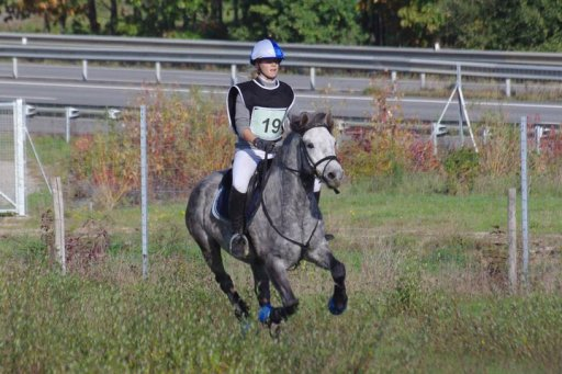 CCE Goven- ponam 2 - 24 Octobre 2010