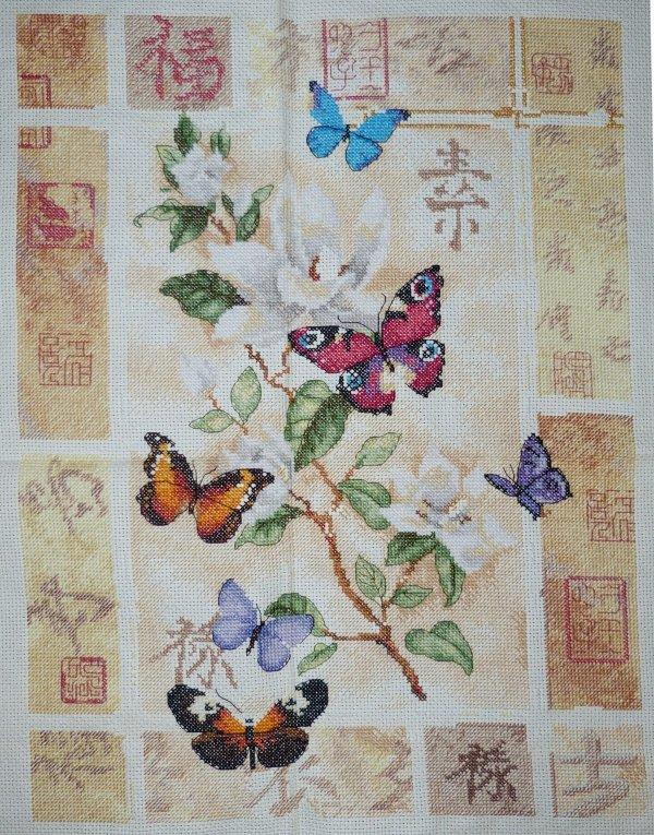 Les Papillons (7)