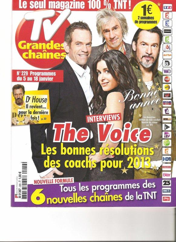 article the voice 2 dans tv grande chaine garou. Black Bedroom Furniture Sets. Home Design Ideas