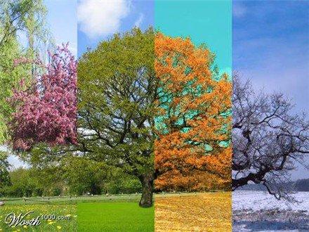 saisons?