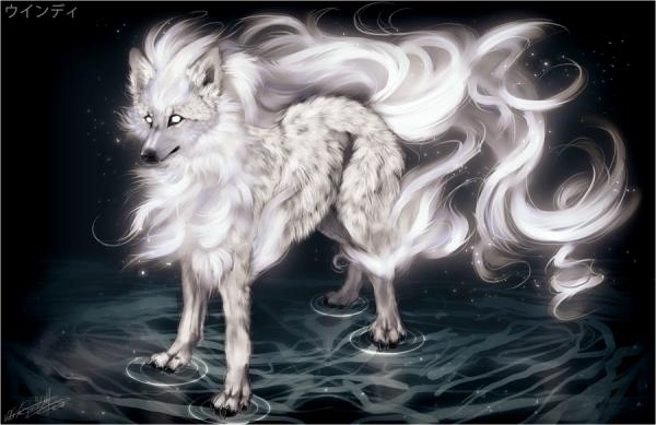Amanda la fille aux loups