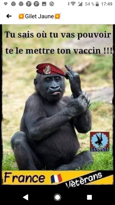 Vétérans...