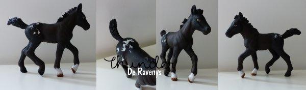 Thunder de Ravenys