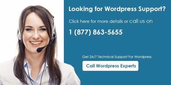 Top Three WordPress Issues And Solutions- By WordPress Customer Support USA Experts