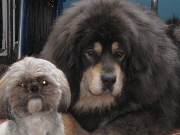 Barros et son petit frère