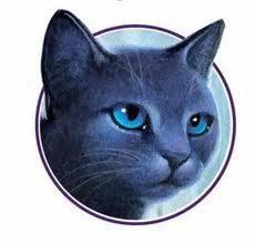 Etoile Bleu