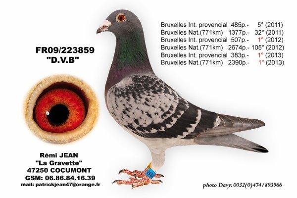 DVB réalise un 4/4 sur Bruxelles dont 11e Féd Bruxelles 2014 à 7h04