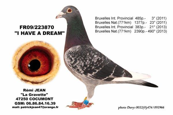 """""""I have a dream"""" après un 4/4 à Bruxelles montre aussi sa qualité en volant en tête sur 500kms"""