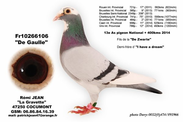DE GAULLE....un nom d'exception pour un pigeon d'exception....