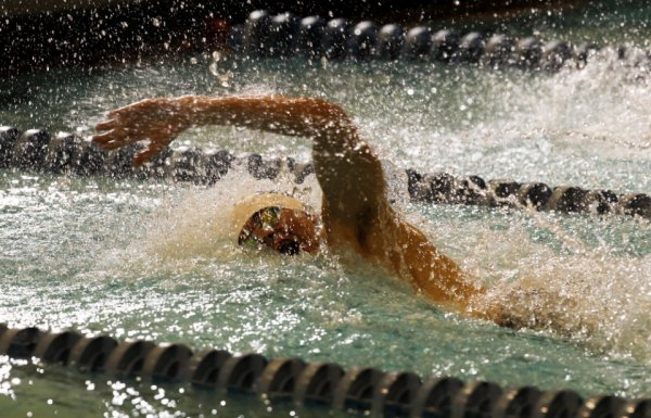Boys Swimming Meet of Champions preview: 200 medley relay, 2016