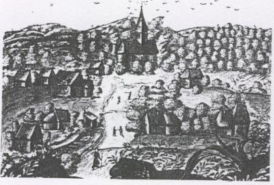 HISTOIRE DE BIESMEREE