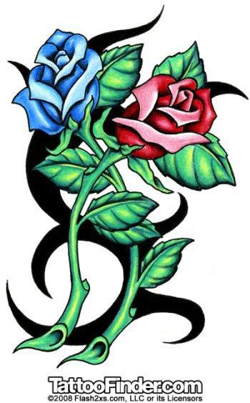 mon future tatou