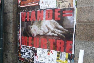 Action abolition de la viande, Mercredi 26 Janvier 2011