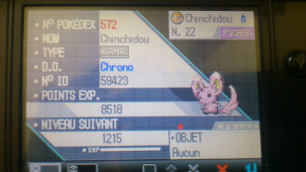 30ème Shiny / Chinchidou