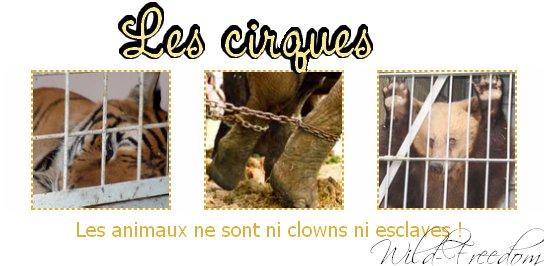 Les cirques