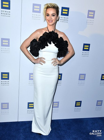 Katy Perry - HUMAN RIGHTS CAMPAIGN'S 2017