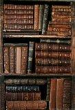 Photo de BookLibrary