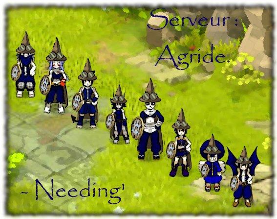 Blog de la Team NeeDing du serveur Agride sur le jeu DOFUS