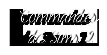 Commandes de Modèles Sims 2