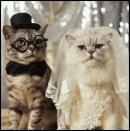 Photo de mariage200908