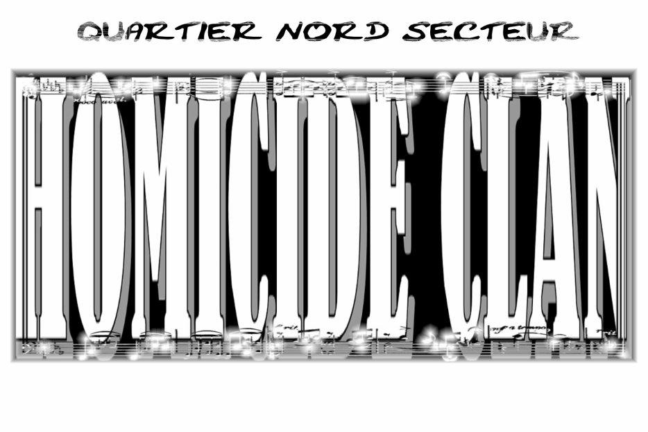 HOMICIDE CLAN OFFICIEL | MYSPACE.COM/LILSTYLEOFFICIEL