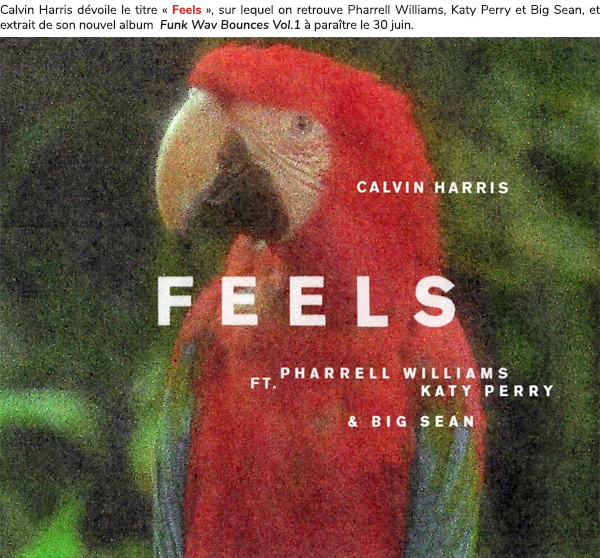 NEW SONG — FEELS