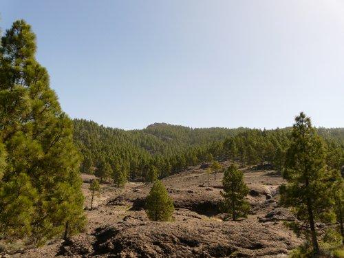 3/7  Vendredi : journée dans les montagnes