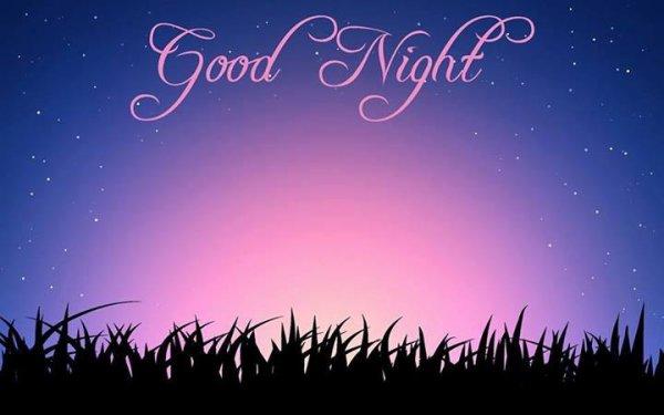 bon nuit a tout <3