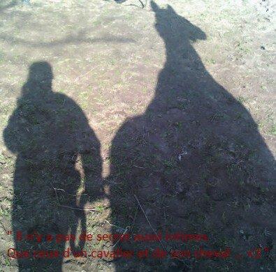 Mon amour de cheval .. <3