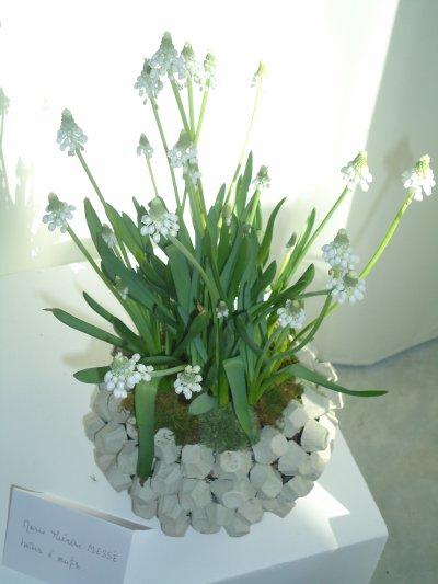Page N° 13 - Visite Expo Art Floral à Lécousse