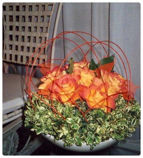Des Roses sous un Dôme ....