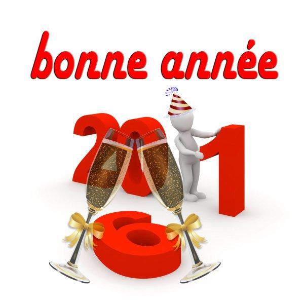 bonne et heureuse année ! que 2016 vous apporte santé, joie, bonheur et paix !!!!